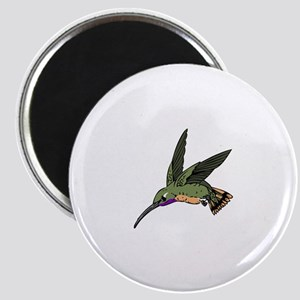 WOODSTAR HUMMINGBIRD Magnets