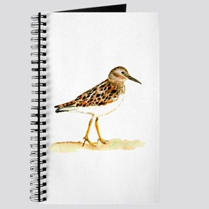 Least Sandpiper Journal