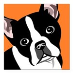 "Boston Terrier Square Car Magnet 3"" X 3"""