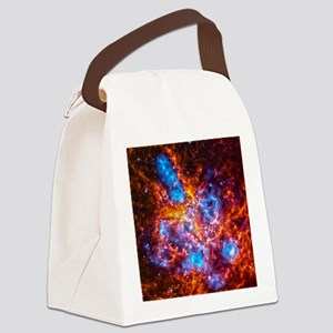 Colorful Cosmos Canvas Lunch Bag