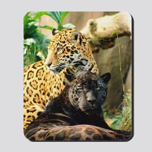Wildcrds Jaguar Mousepad