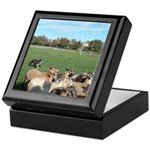 Sheep Dog and Sheep Keepsake Box