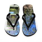 Large tall trees #odcctv Flip Flops
