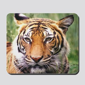 Wildcrds Tiger Mousepad