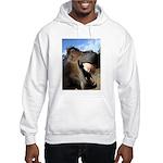 Sustainable Horse Hooded Sweatshirt