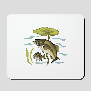 BASS FISH AND LILYPAD Mousepad