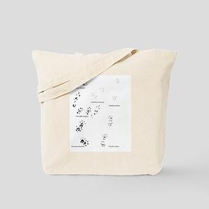 save the wild chinchillas Tote Bag