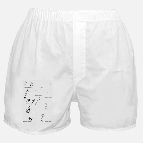 save the wild chinchillas Boxer Shorts