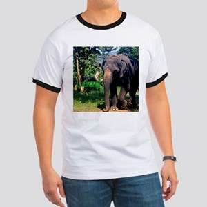 Lead Follow Elephant