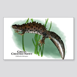 Great Crested Newt Sticker (Rectangle)