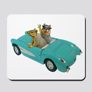 Squirrels Car Mousepad