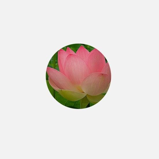 Sacred Lotus Flower Mini Button