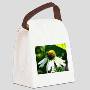 Close-up of a white echinacea Canvas Lunch Bag