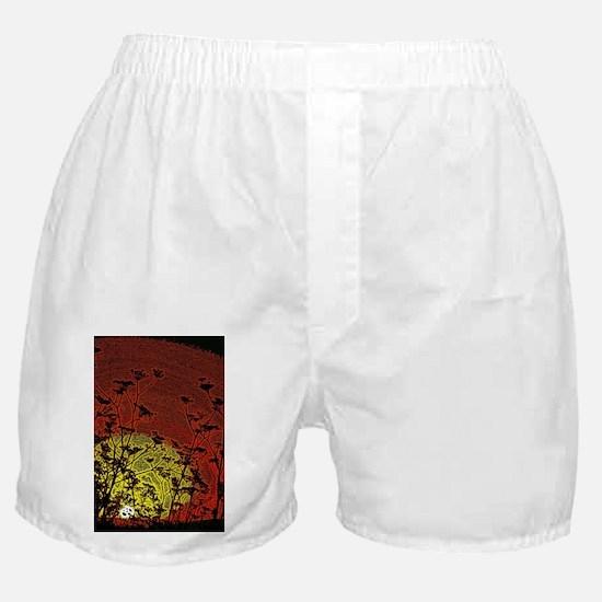 Australian Sun Boxer Shorts