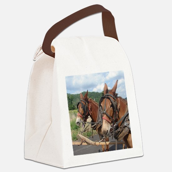 Two Mules for Sister Sue Canvas Lunch Bag