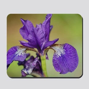 iris outdoors Mousepad
