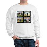4 Seasons with a Pug Sweatshirt