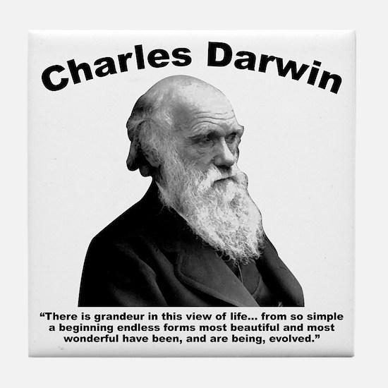 Darwin: Evolved Tile Coaster