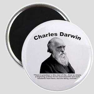 Darwin: Evolved Magnet