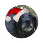 Indy Ornament (Round)