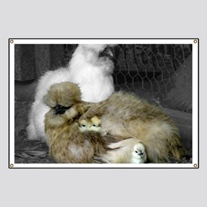 Silkie Chickens with Chicks Banner