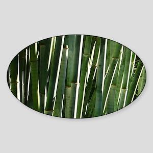 Bamboo Absrtact Sticker (Oval)