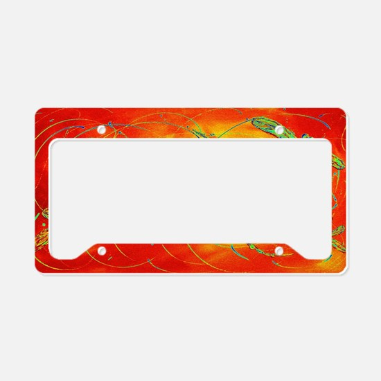 Dragonfly Fire License Plate Holder