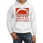 Thanksgiving Humor Blessing Hooded Sweatshirt