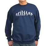 Skateboard Apes Evolution Sweatshirt (dark)