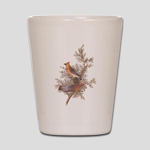 Cedar Waxwing Birds Shot Glass