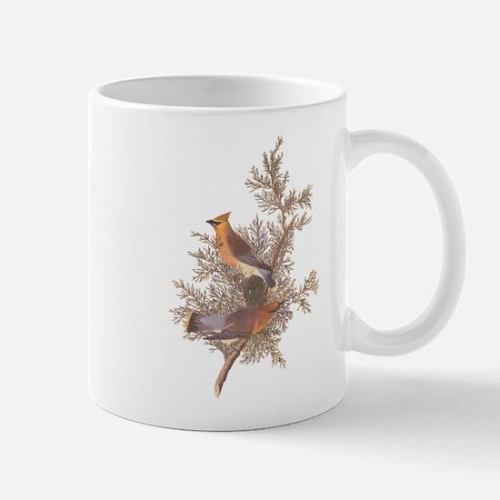 Cedar Waxwing Birds Mugs