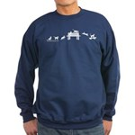 Skateboard Cats Evolution Sweatshirt (dark)