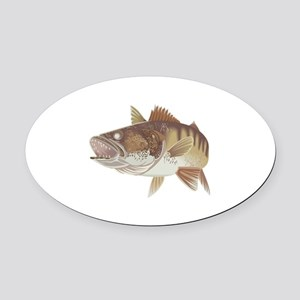 LARGE WALLEYE Oval Car Magnet