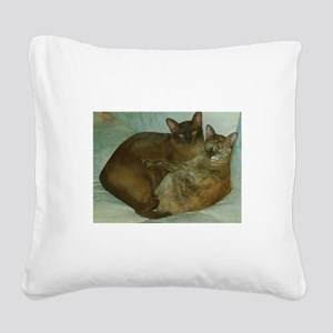 Chocolate and Chocolate Torto Square Canvas Pillow