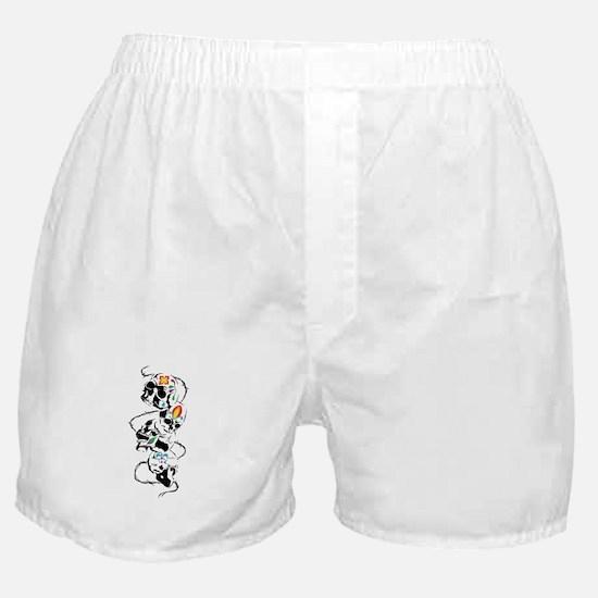 DECORATED SKULLS Boxer Shorts