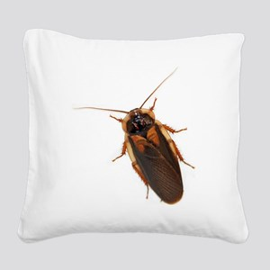 Male Dubia Roach Square Canvas Pillow