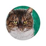 StephanieAM Tabby Cat 3.5