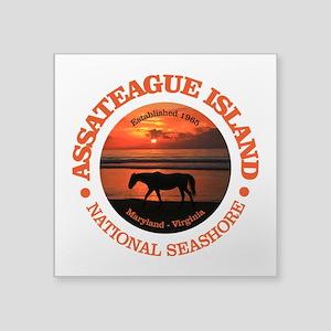 Assateague Island Sticker