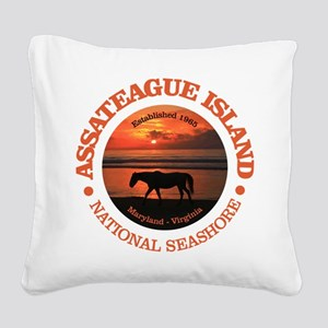 Assateague Island Square Canvas Pillow