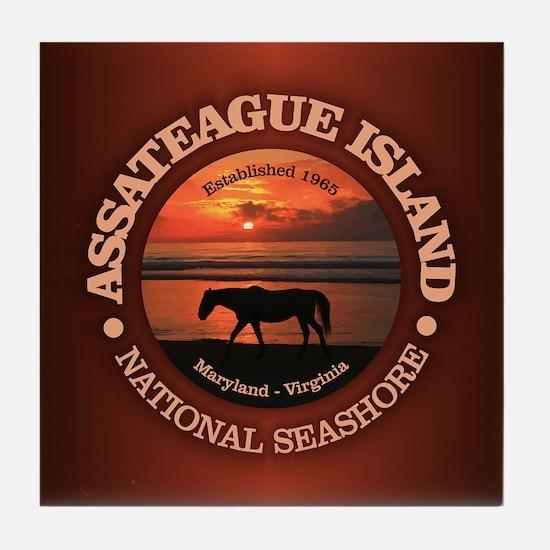 Assateague Island Tile Coaster