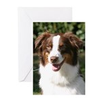 Adopted Dogs Greeting Cards (Pk of 10)