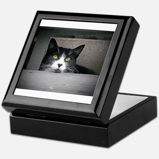 Schubert the cat daydreaming Keepsake Box