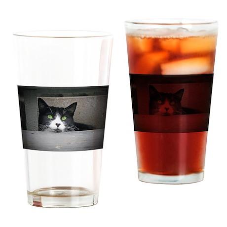 Schubert the cat daydreaming Drinking Glass