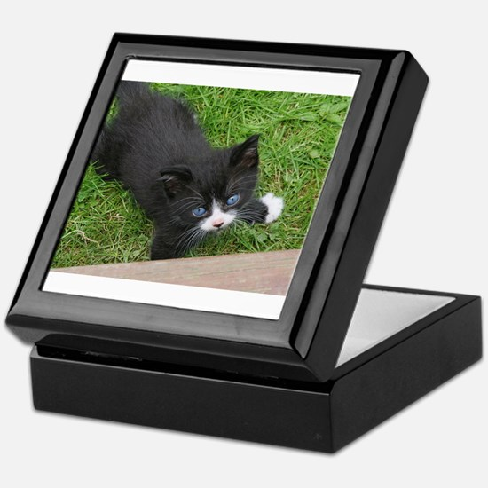 Schubert the playing cat Keepsake Box