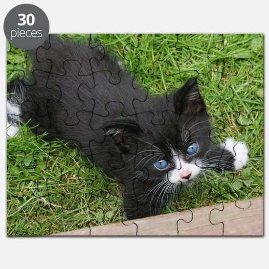 Schubert the playing cat Puzzle