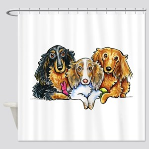3 Longhaired Dachshunds Shower Curtain