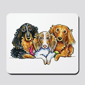 3 Longhaired Dachshunds Mousepad