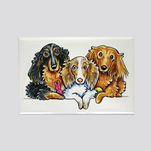 3 Longhaired Dachshunds Magnets