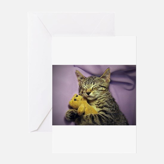 Daisy the sleeping kitty cat with h Greeting Cards