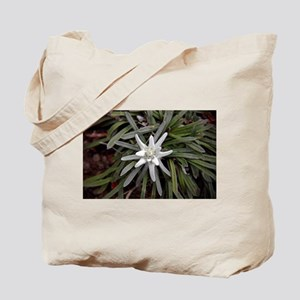 White Alpine Edelweiss Flower Tote Bag